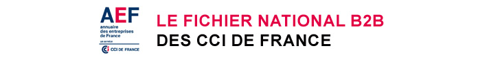 AEF, le fichier national B to B des CCI France