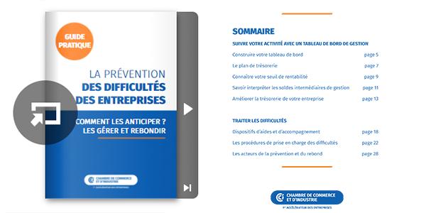"""Guide pratique """"La prévention des difficultés des entreprises"""""""