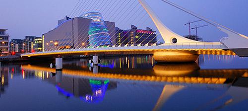 Atelier pays : le marché Irlandais, un marché de niches et d'opportunités